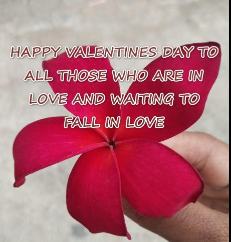 Valentine day wishes for boyfriend