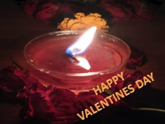 free valentines day photo pic download